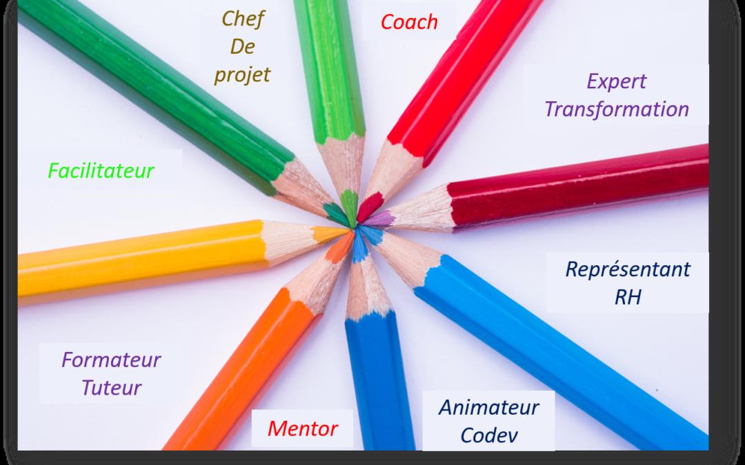 Lancement d'un groupe de supervision pour coachs internes, facilitateurs, représentants RH  et autres artisans internes des transformations
